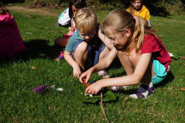 Camping Du Quinquis : Activités Enfants